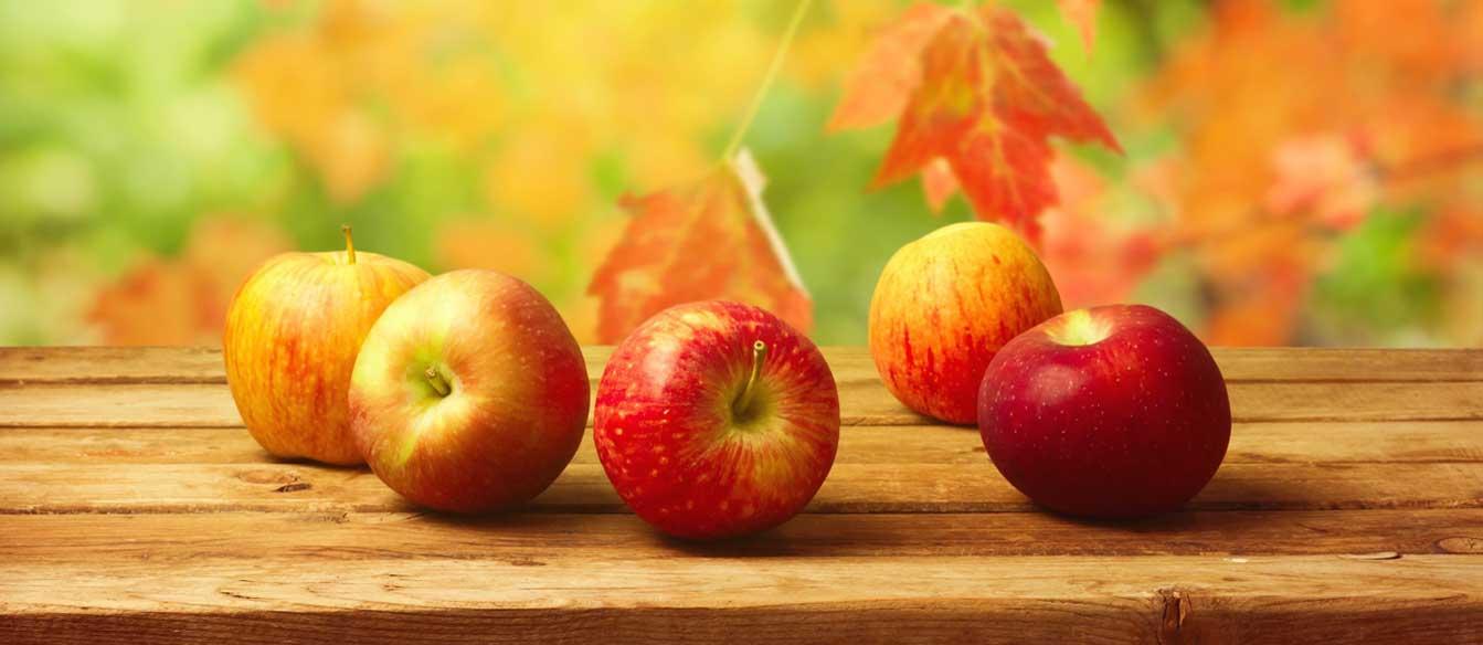 fall_apples-wallpaper-1440x900.jpg